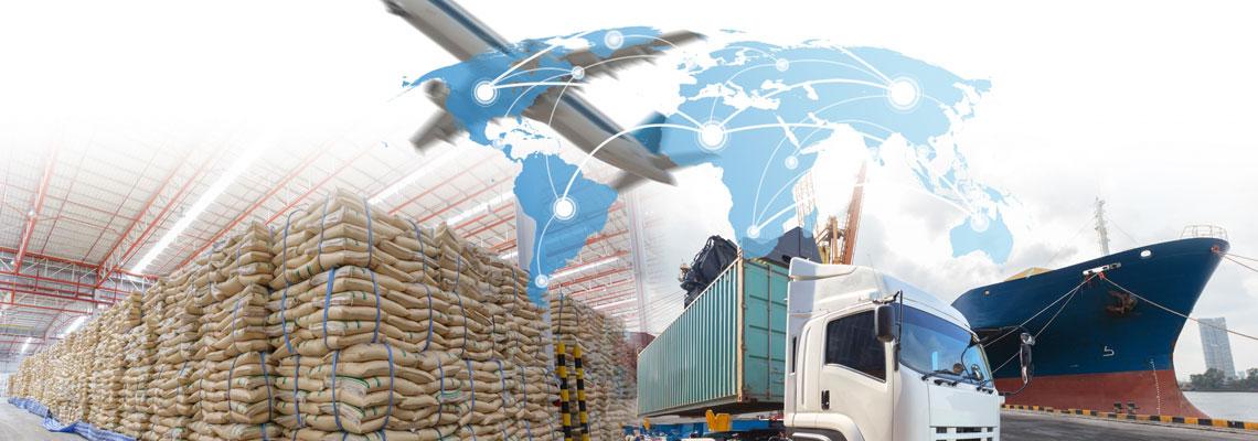 Solutions logicielles pour les entreprises de l'import export